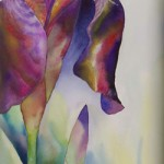 Iris | Watercolor | 14X30 in. | Sold